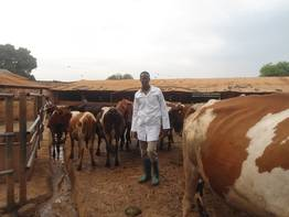 Mnyandoe Laban competently supports his people in animal health issues. We supported him with two scholarships.